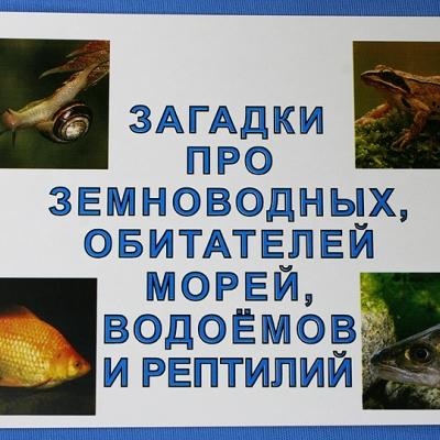 """Комплект учебного пособия для дошкольников """"Загадки про земноводных, обитателей морей, водоёмов и рептилий"""""""