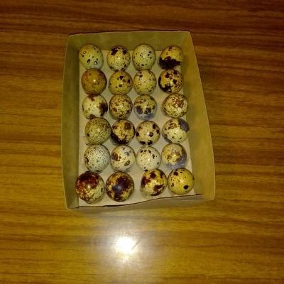 Коробка для фасовки перепелиных яиц 24 штуки