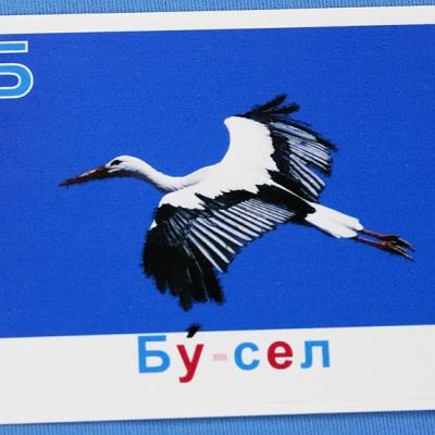 Купить Комплект учебного пособия для дошкольников Беларускi алфавiт з малюнкамi