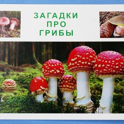 """Комплект учебного пособия для дошкольников """"Загадки про грибы"""""""